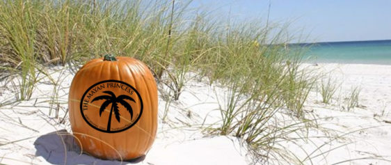Video: Why I love fall on the beach in Port Aransas!