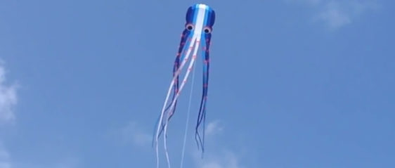 50 Foot Long Octo-Kite in Port A